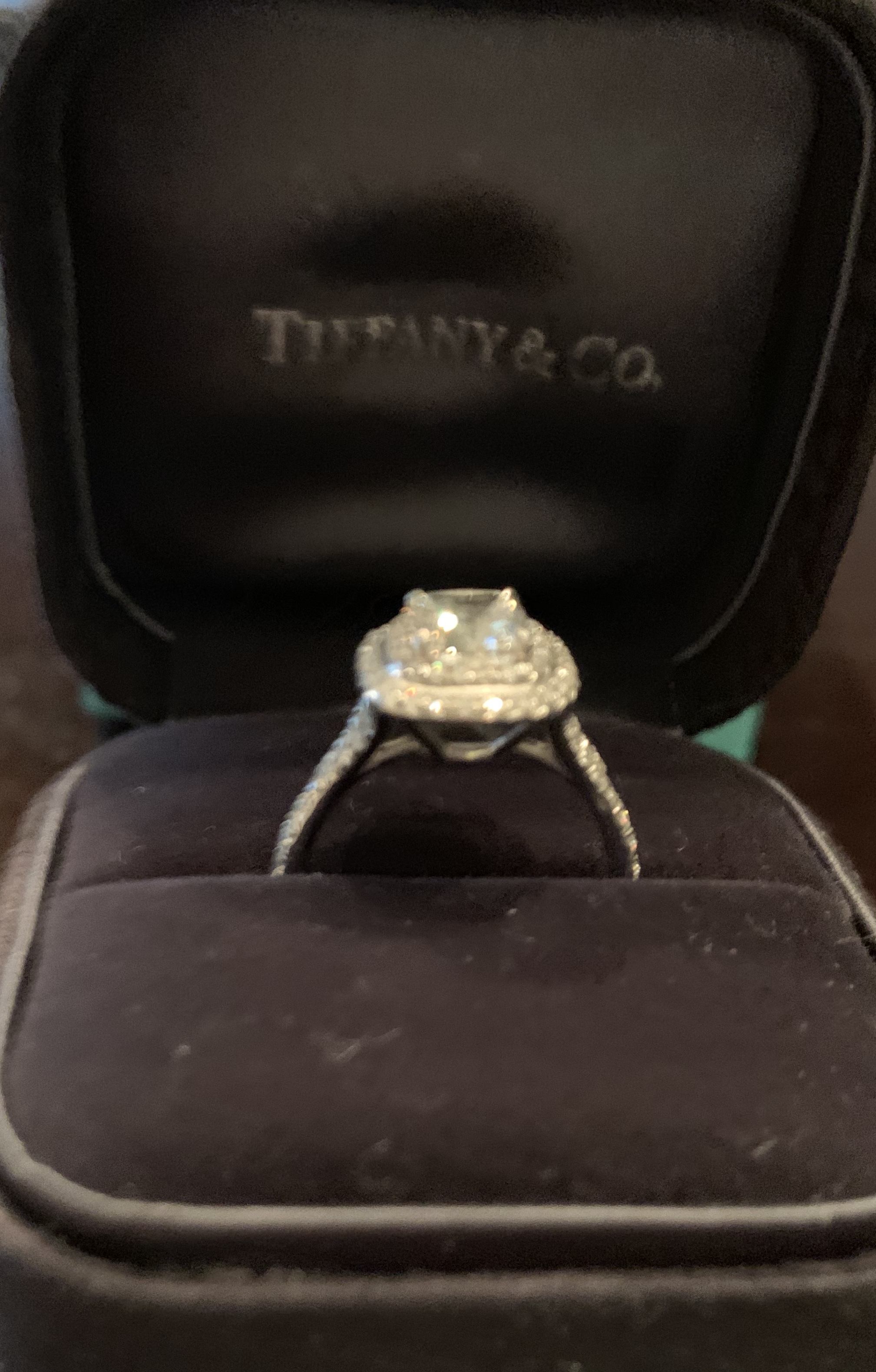 dca4a28f2 Tiffany Soleste Double Halo Engagement Ring 1.28 Carat Center Stone ...