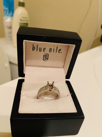 Women's Blue Nile Diamond/
