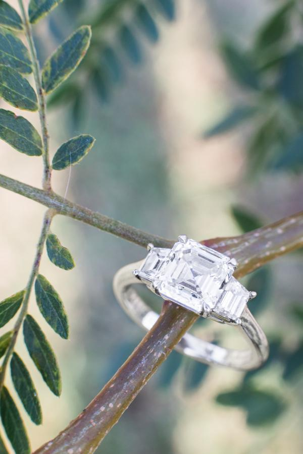 Gorgeous Victor Canera Engagement