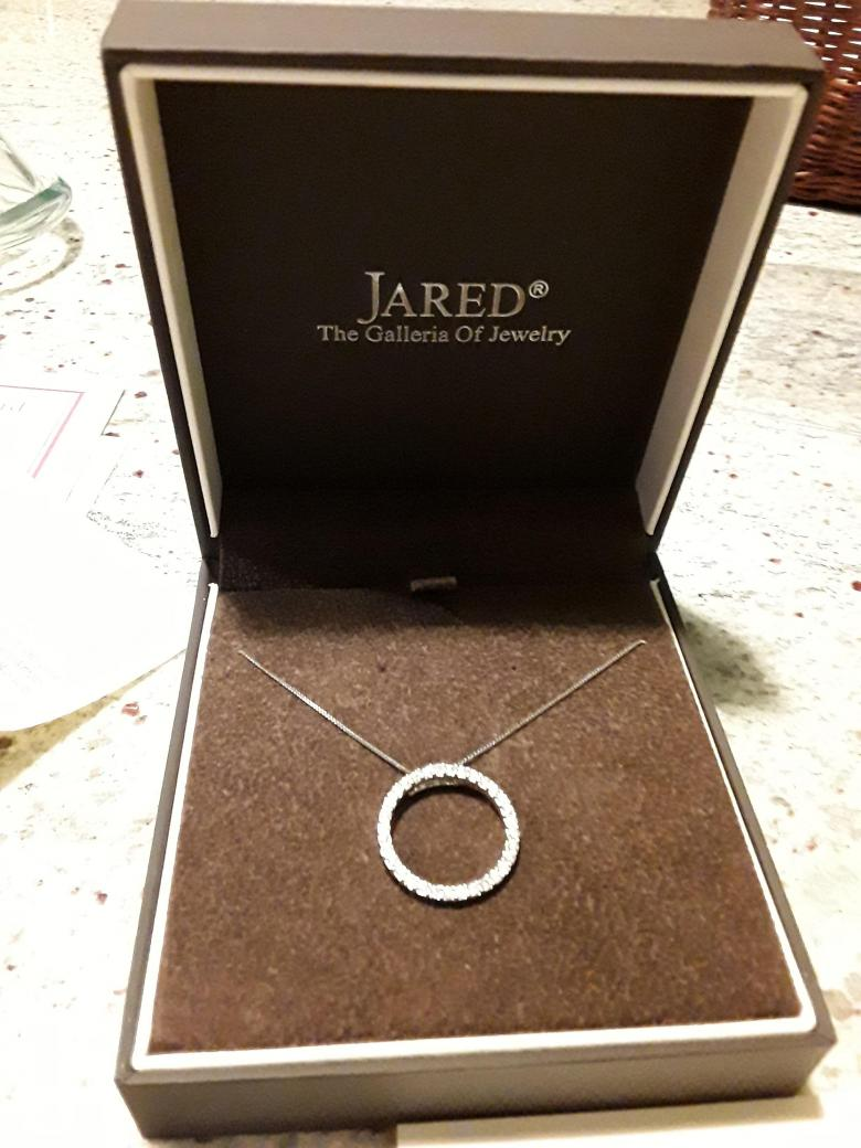 Jared's Circle Diamond Necklace